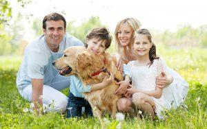 فواید نگهداری حیوانات خانگی و فواید نگهداری سگ