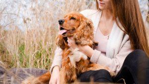 رفتار شناسی سگ