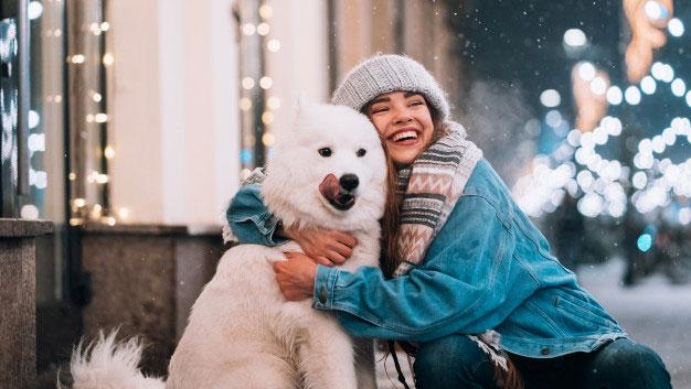 نگهداری سگ در زمستان