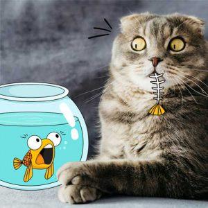 نشانه های درد گربه ها