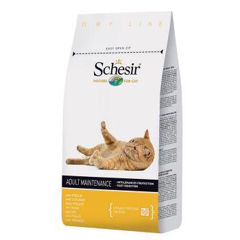 غذای خشک مخصوص گربه های بالغ با طعم مرغ