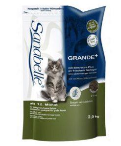 غذای خشک گربه های بالغ با دانه های درشت