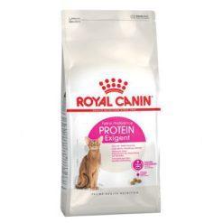 غذای خشک گربه بد اشتها با میل به پروتئین بالا