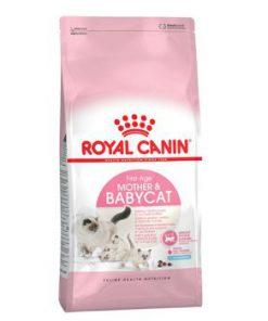 غذای خشک بچه گربه 1 تا 4 ماه و مادر باردار و شیرده