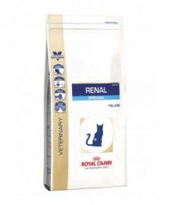 غذای خشک گربه بد غذا مبتلا به بیماریهای کلیوی