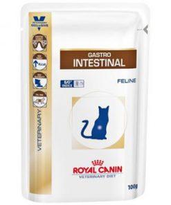 پوچ گربه مبتلا به بیماریهای گوارشی