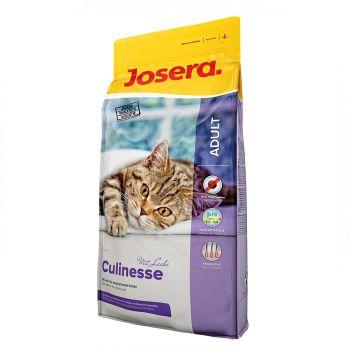 غذای خشک کولینس مخصوص گربه های بالغ بد غذا