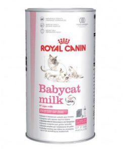 شیر خشک بچه گربه - ست شیشه شیر برای فاز اول رشد