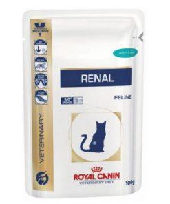 پوچ گربه مبتلا به بیماری های کلیوی - گوشت