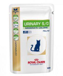 پوچ گربه مبتلا به بیماری های مجاری ادراری -گوشت