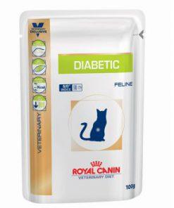 پوچ گربه مبتلا به بیماری های دیابت ملیتوس