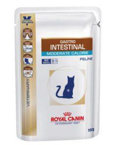 پوچ گربه مبتلا به بیماری های گوارشی با کالری متوسط