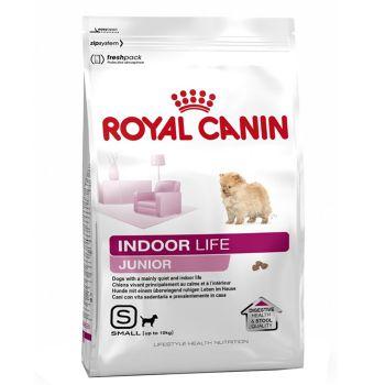 غذای خشک سگ نژاد کوچک داخل خانه 2 تا 10 ماه