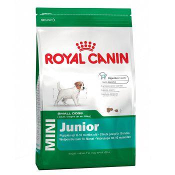 غذای خشک سگ نژاد کوچک 2 تا 10 ماه