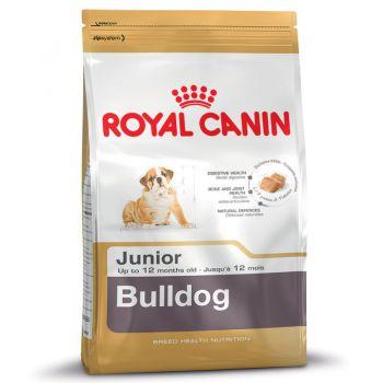 غذای خشک سگ نژاد بولداگ 2 تا 12 ماه