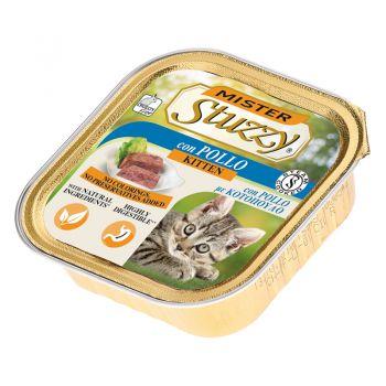 خوراک مخصوص بچه گربه