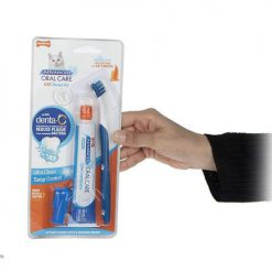 Oral care dental kit