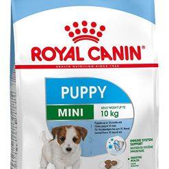 ROYAL CANIN SHN MINI PUPPY 800G