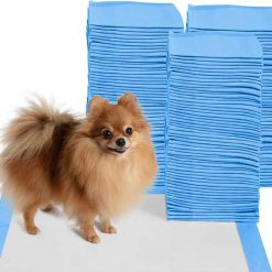 پد بهداشتی سگ