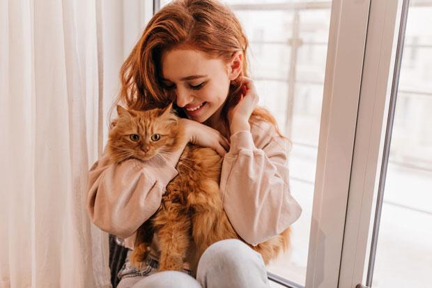 بازی کردن گربه و 4 نکته ای که باید حتما رعایت کنید