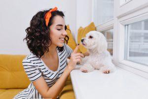 شخصیت سگ با شخصیت صاحبش ارتباطی دارد؟