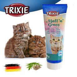 مالت گربه تریکسی با طعم علف گربه 100 گرم